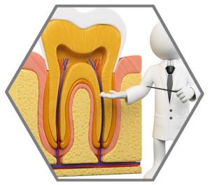 Best Dentist in Noida Root canal Dental care in Noida